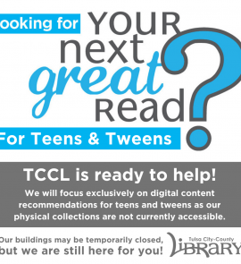 informational graphic about your next great read for teens service